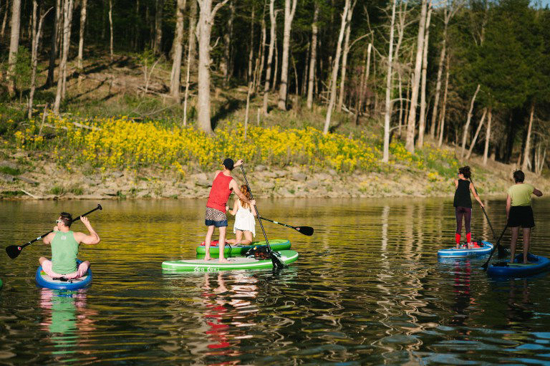 Picture of Basic Stand Up Paddleboard (SUP)
