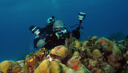 Picture of Underwater Photo Course
