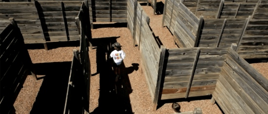 Picture of Black Hills Maze
